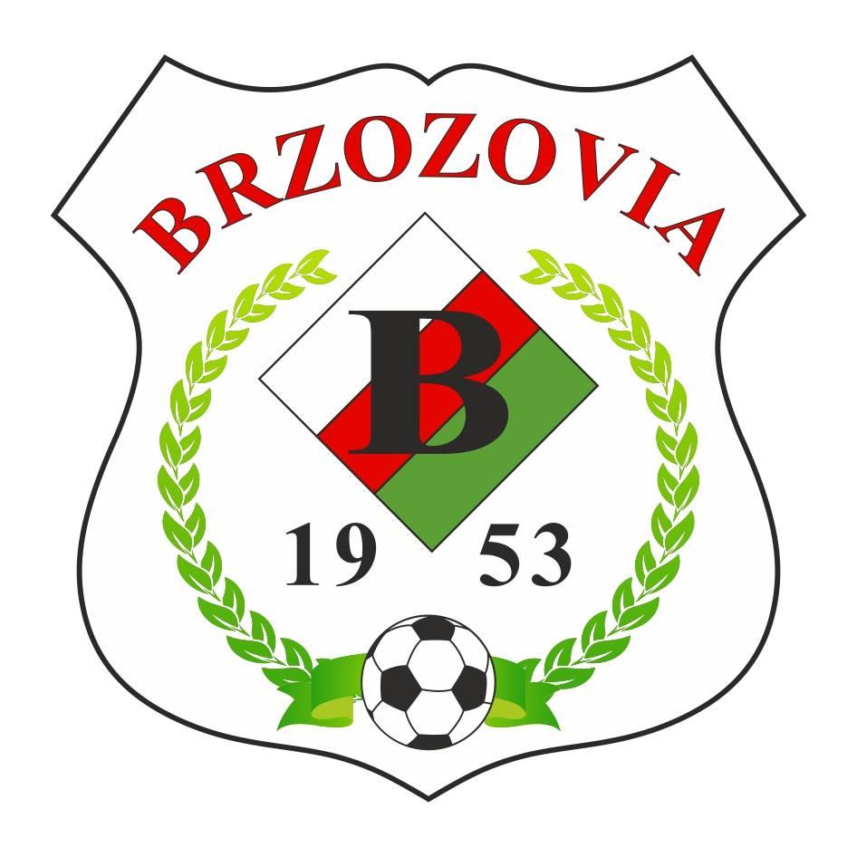 Brzozovia